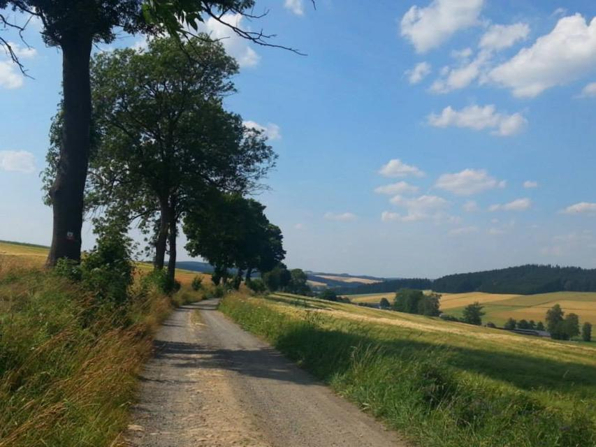 Aussicht Richtung Edlendorf