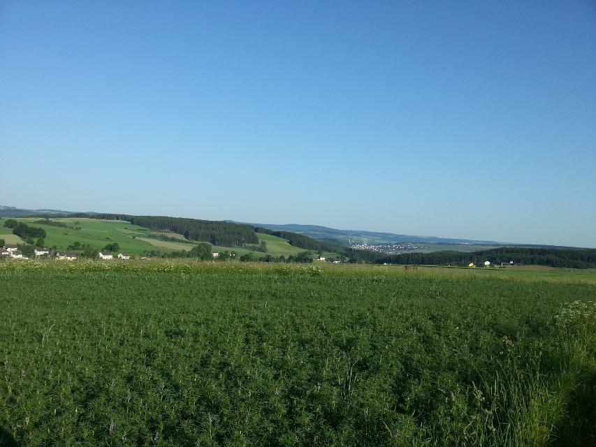 Blick auf Blankenberg