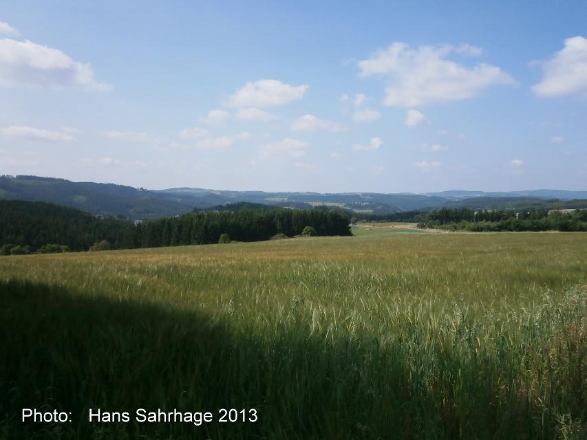 Blick über den Frankenwald Richtung Westen