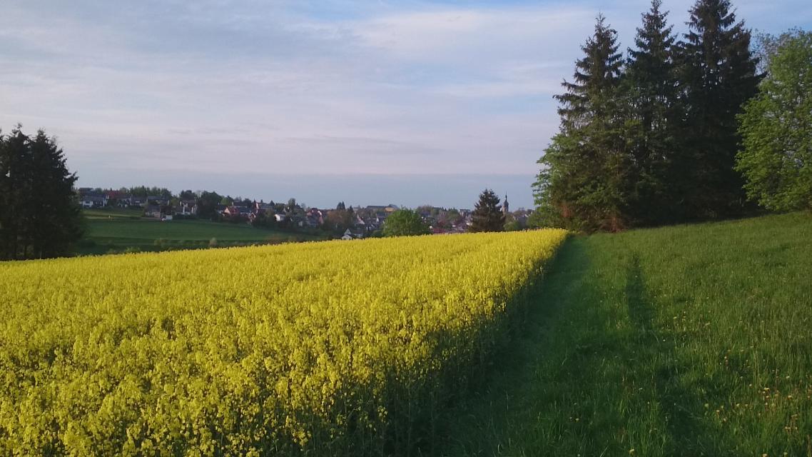Blick nach Schwarzenbach