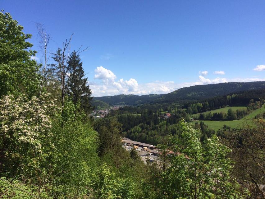 Blick nach Wallenfels