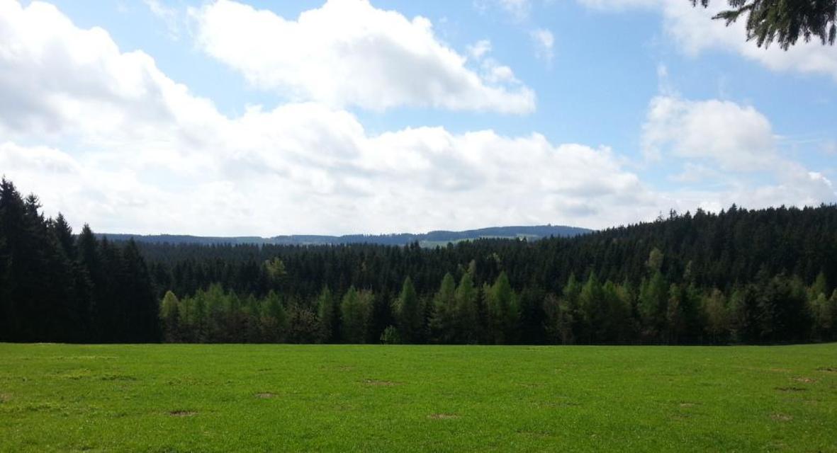 Blick zum Döbraberg