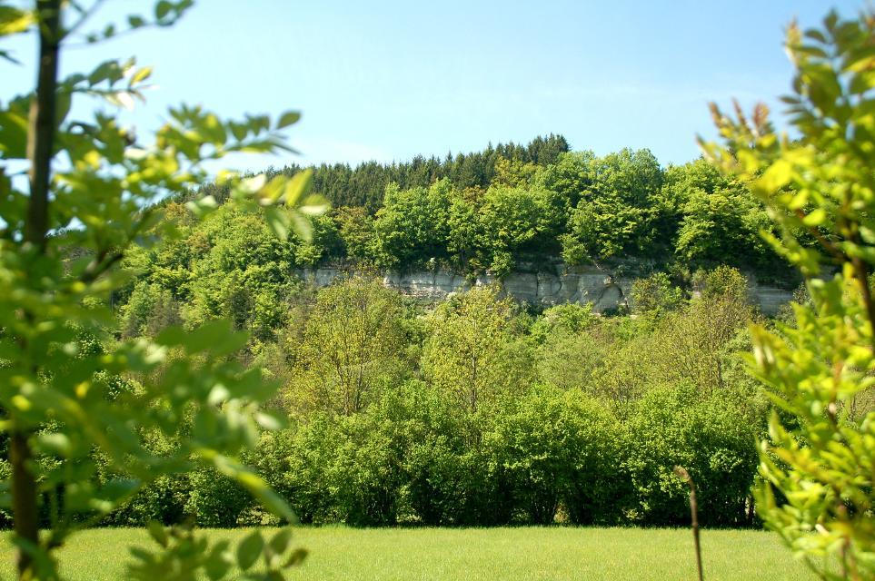 Naturschutzgebiet Zeyerner Wand
