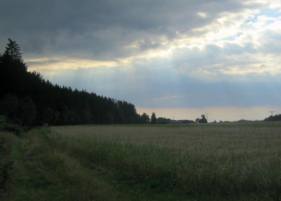 Blick Richtung Gemeinreuth