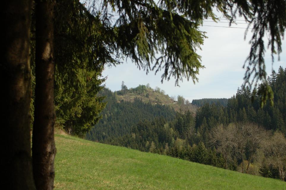 Blick auf Galgenberg
