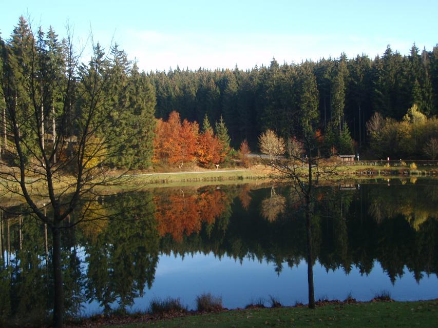 Herbst am Ölschnitzsee