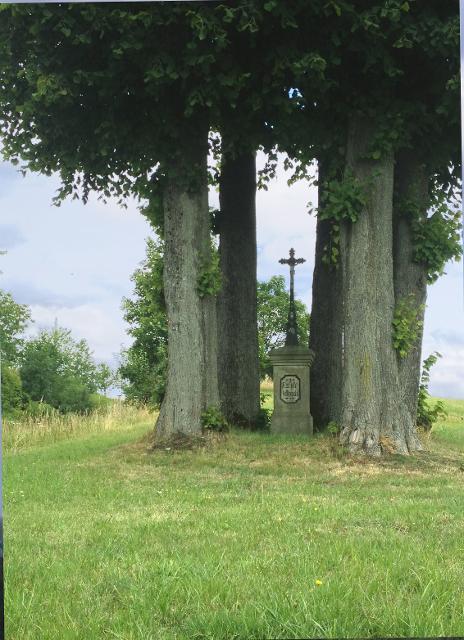 Fünf Linden mit Kreuz bei Marienroth