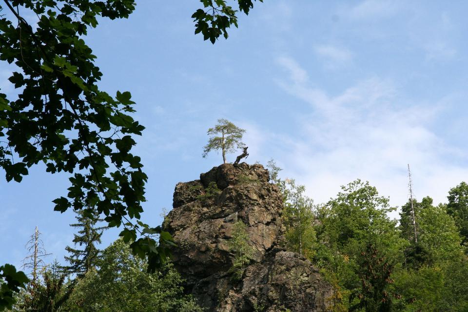 Blick zum Hirschsprung