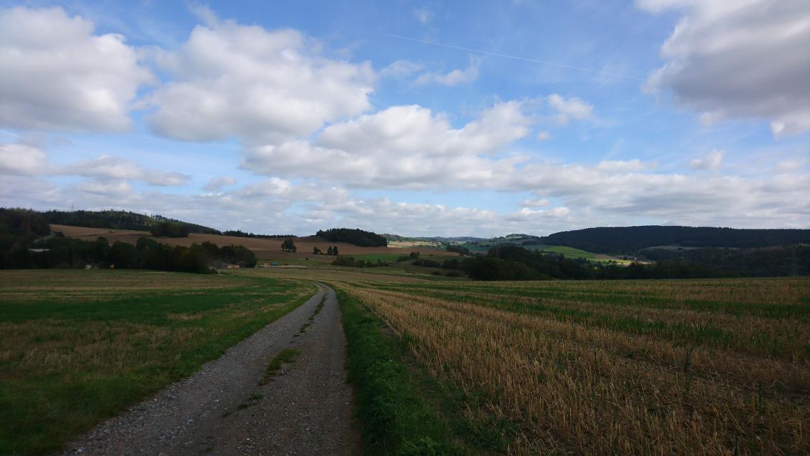 Blick Richtung Vogtendorf