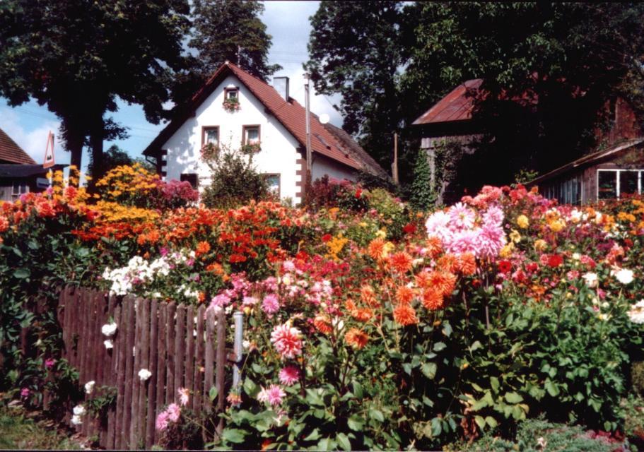 Golddorf Weickenreuth