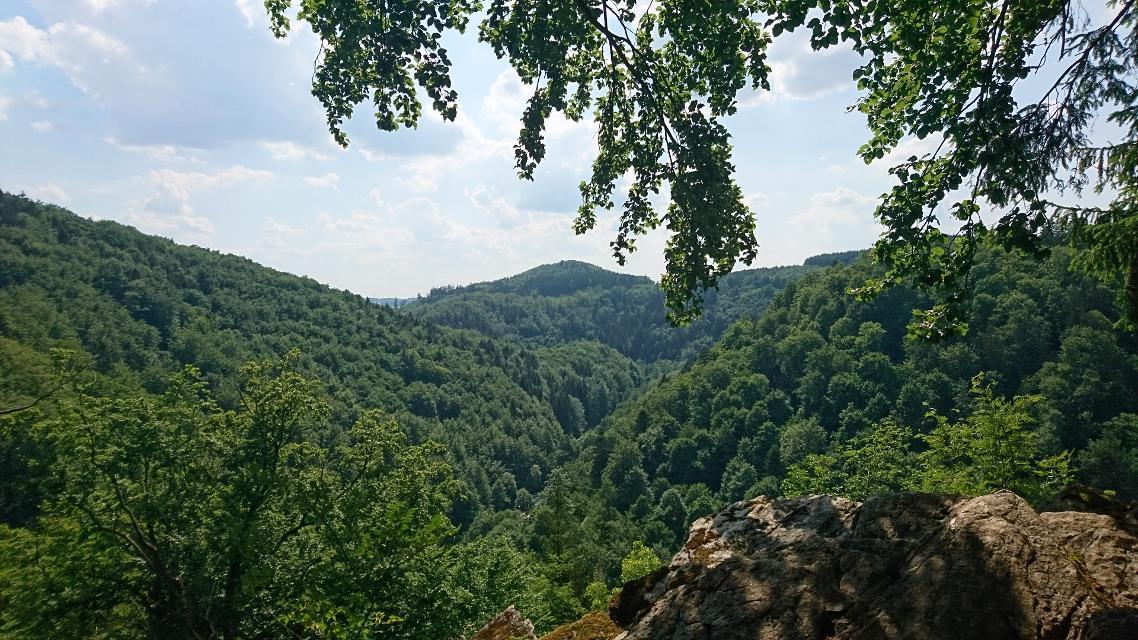 Am Forstmeistersprung