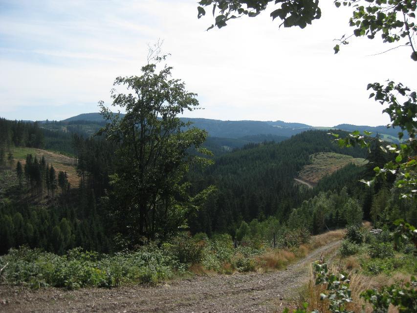 Blick ins Leutnitztal