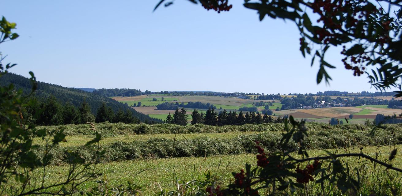 Blick auf den Frankenwald