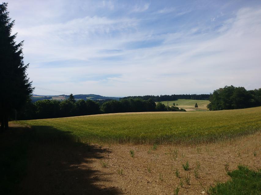 Bei Altenreuth