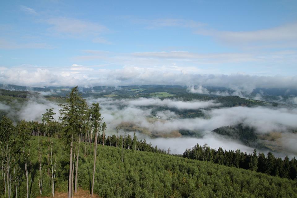 Thüringen am Morgen