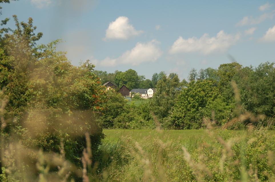 Blick nach Schottenhammer