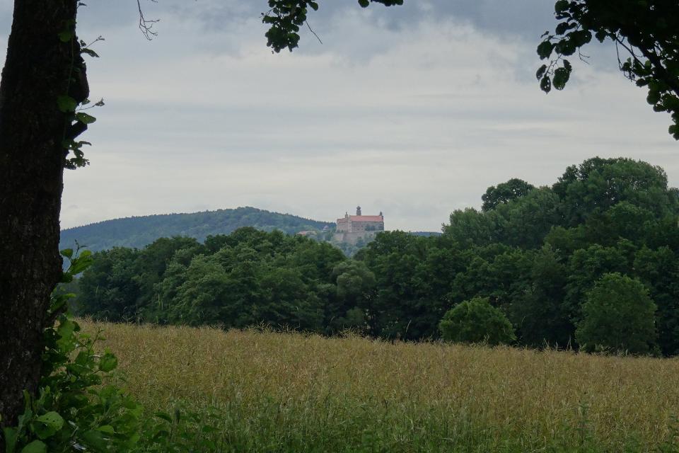 Blick auf die Kulmbacher Plassenburg