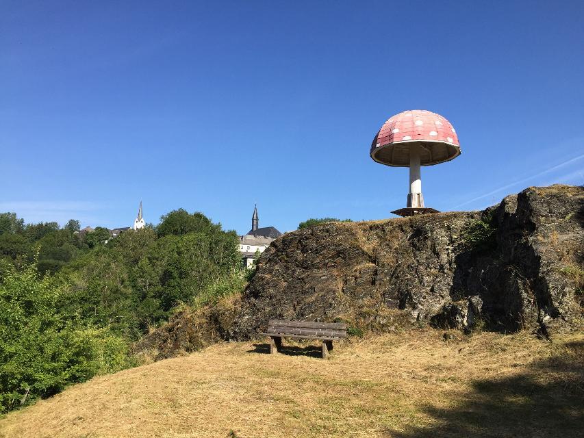 Fliegenpilz am Schlossberg