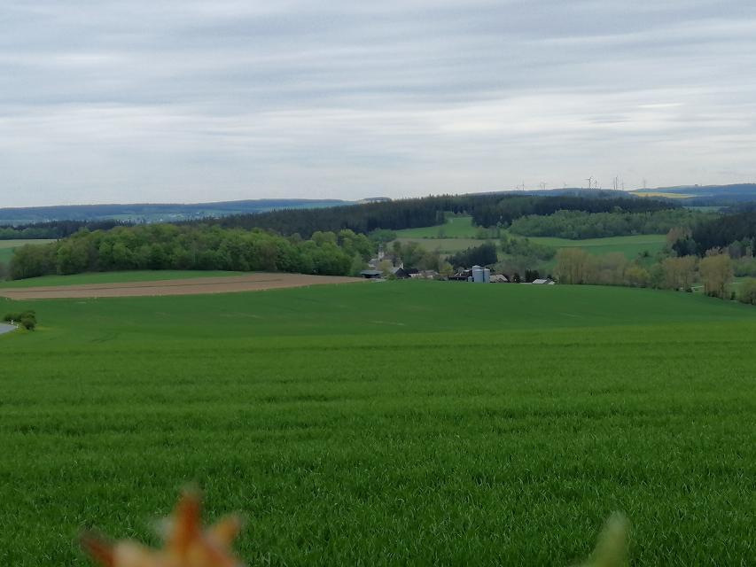 Blick nach Reitzenstein