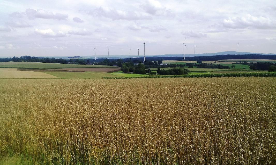 Blick auf Weißlenreuth