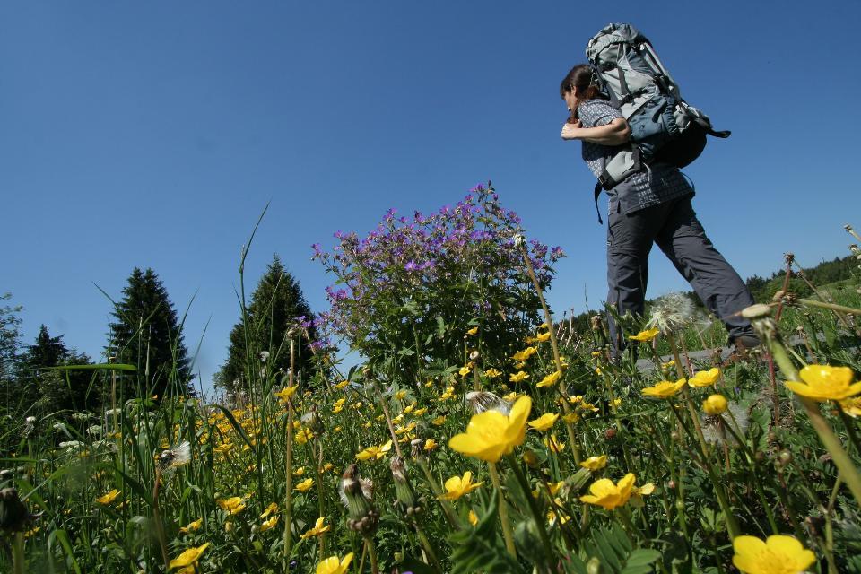 Wandern auf dem Rennsteig im Frankenwald