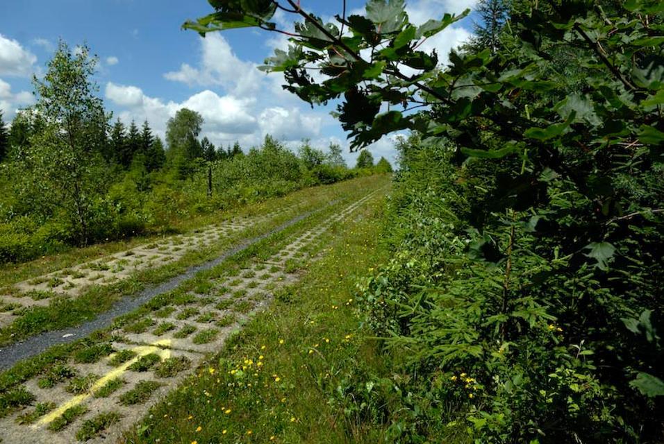 Kolonnenweg am Grünen Band