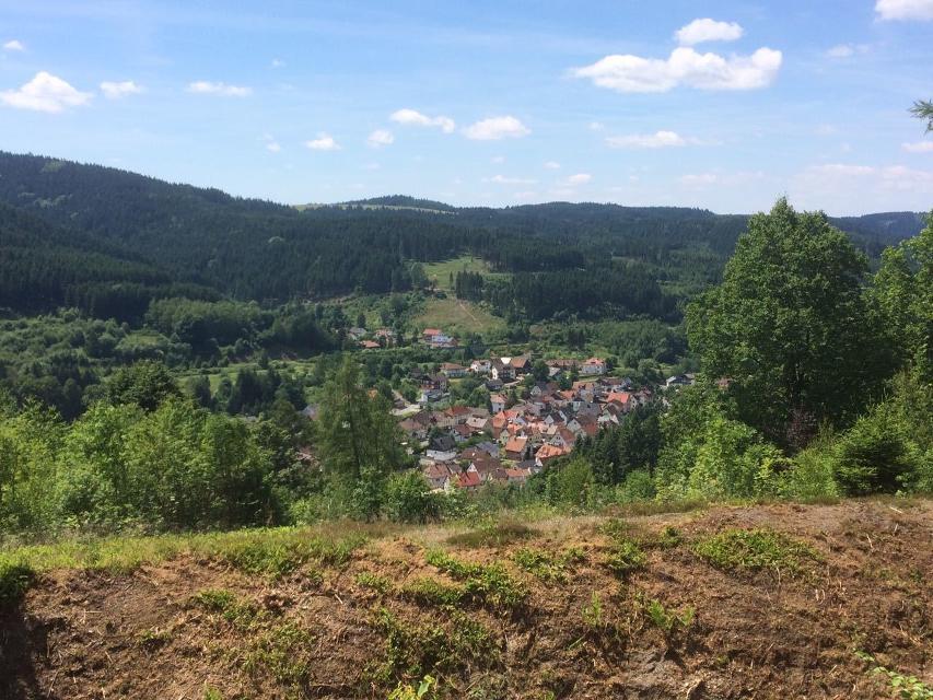 Blick auf Wallenfels