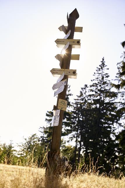 Wegweiser auf dem Gipfel des Döbraberges