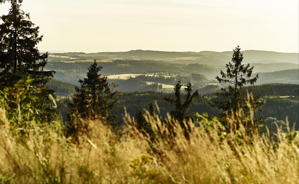 Weite atmen - Blick vom Döbraberg auf den Frankenwald
