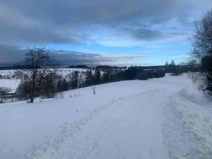Winter in der Teuschnitzaue
