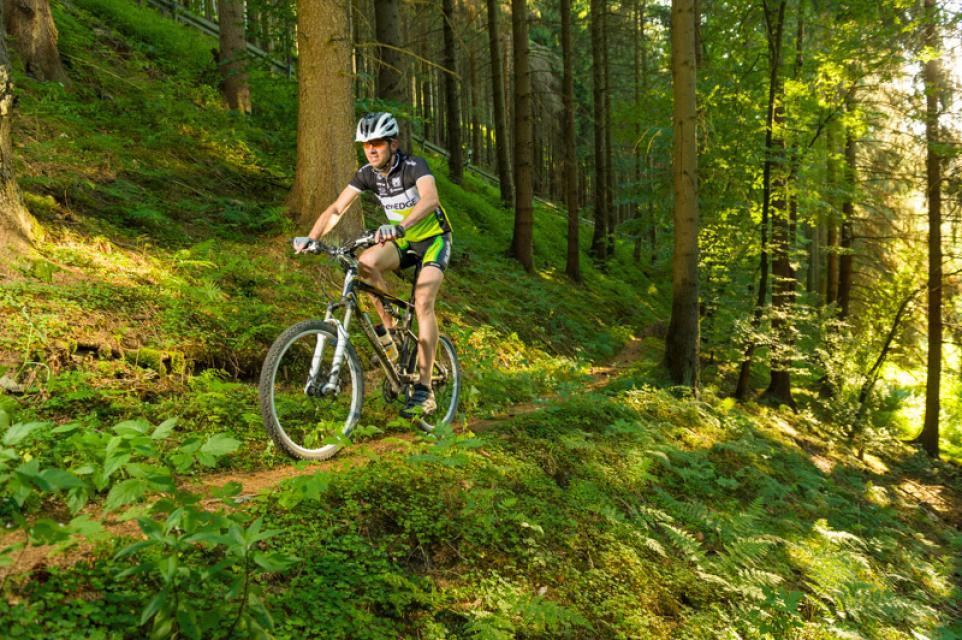 - Frankenwald Tourismus & Tourist-Information der Fränkischen Rennsteigregion