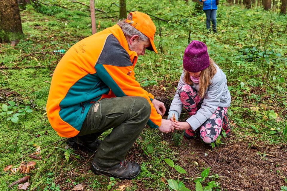 Werde Baumpate - pflanze den Frankenwald von morgen!