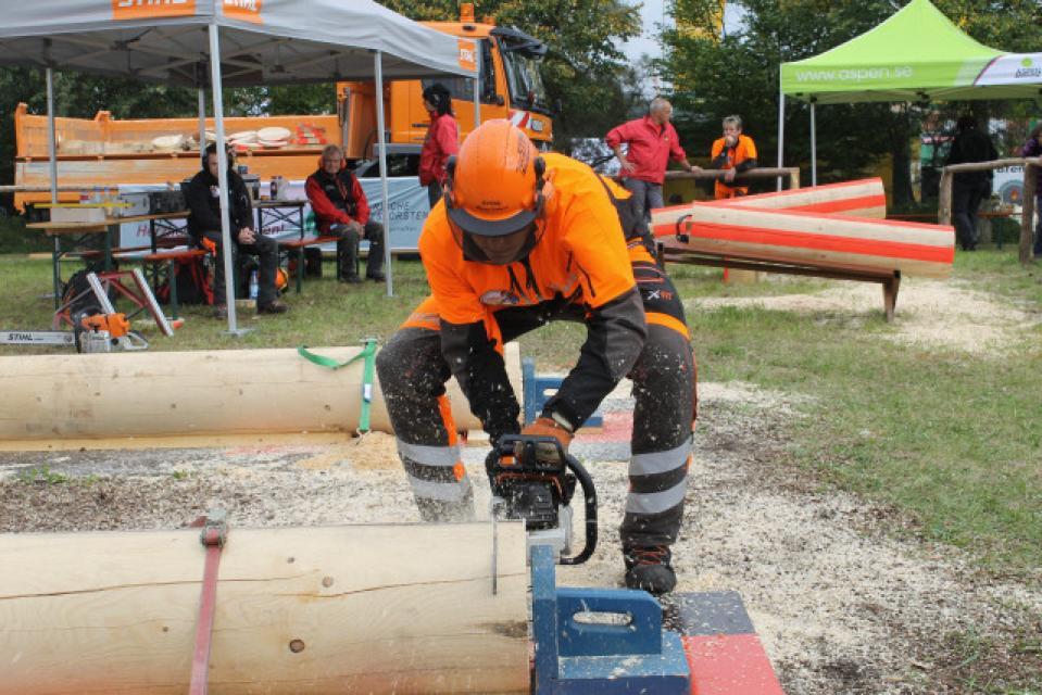 1. Oberfränkische Waldarbeitsmeisterschaft