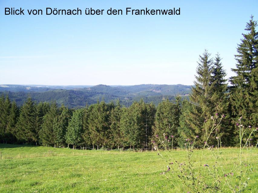 FWV OG Wallenfels -
