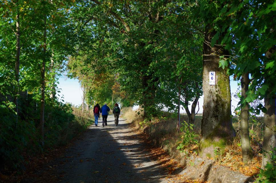 Tourismusverband Oberes Rodachtal -