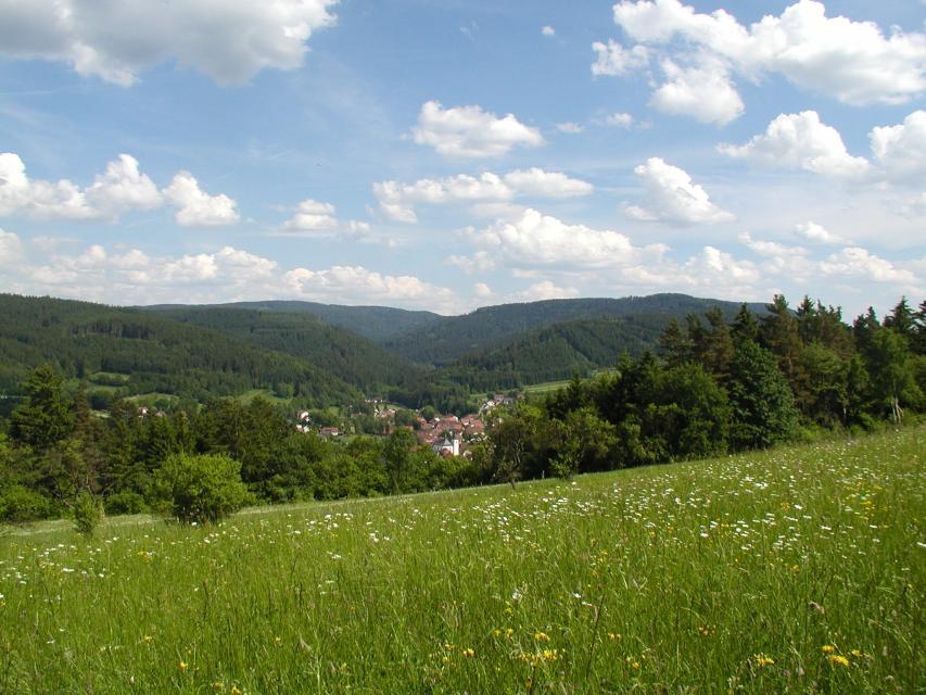 Fischbachtal und Seibelsdorf (KC 5)*
