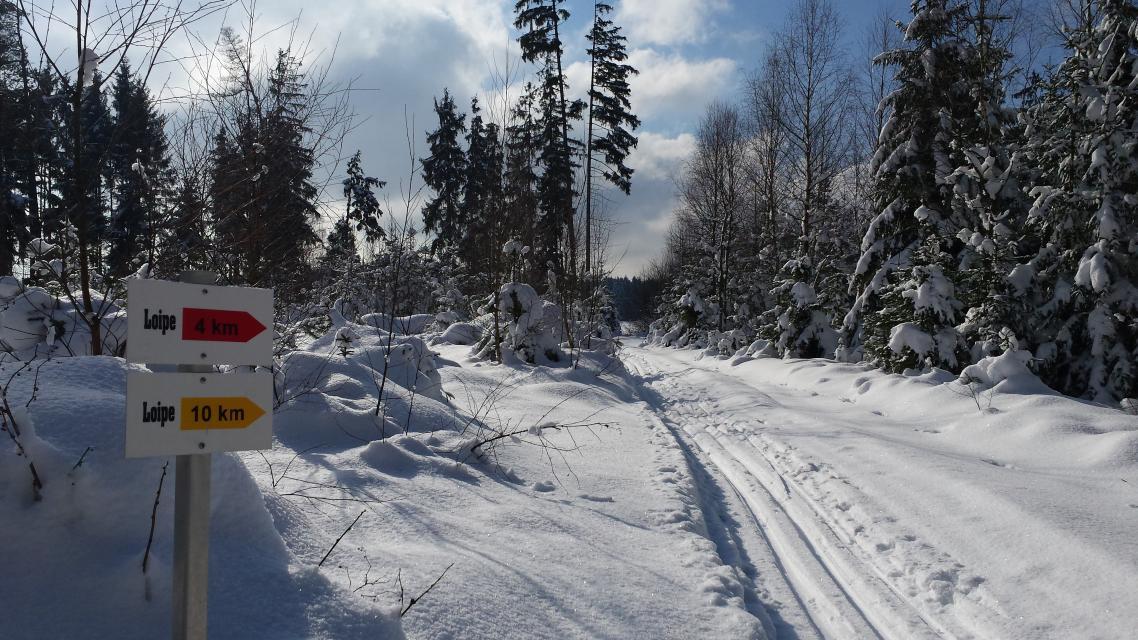 Naila: Spiegelwald Loipe, 9,2 km