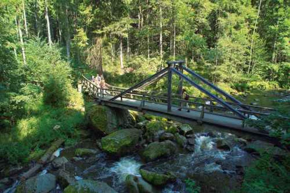 Frankenwald Tourismus -