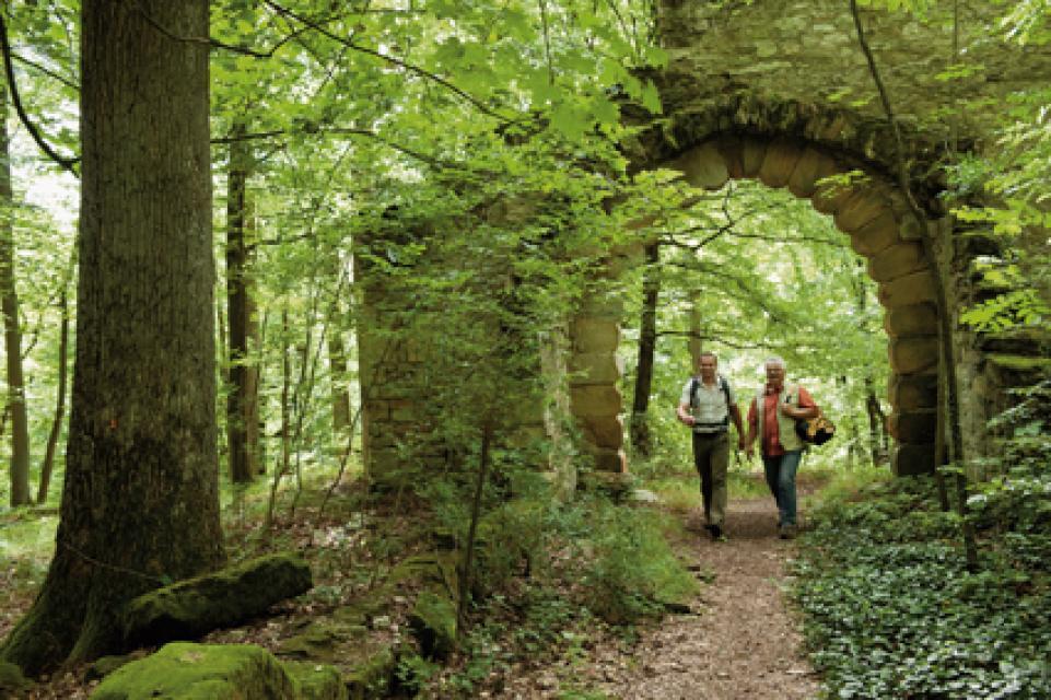 Landschaftspark Bettenburg