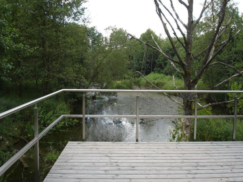 Naturwaldreservat Seelaub