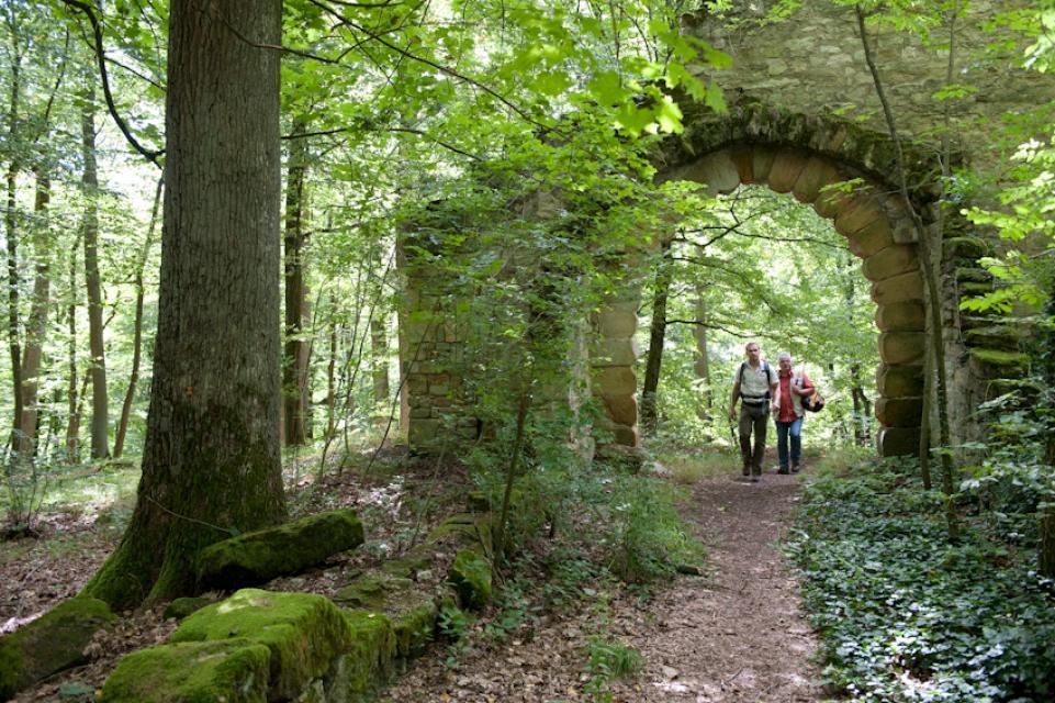 Zugehöriger Landschaftspark Bettenburg