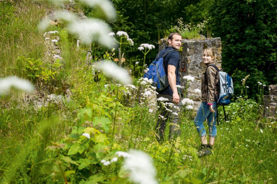 Tolle Wanderungen zur Burgruine Bramberg