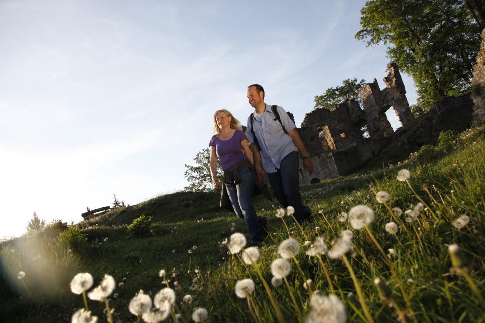 Burgruine Raueneck in idyllischer Natur