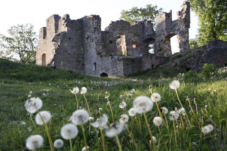 Ruine Raueneck mit Mittelalterflair