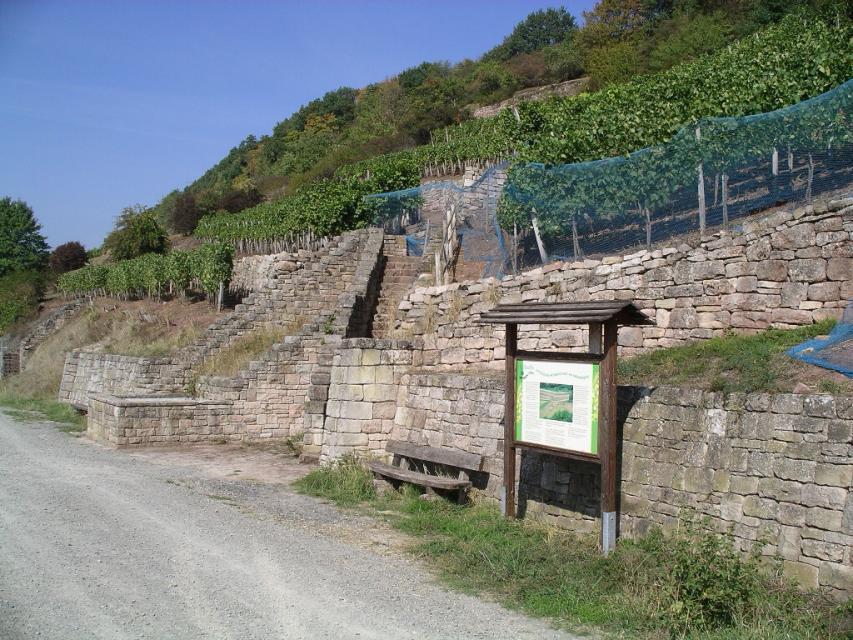 Winzertreppen in Steinbach