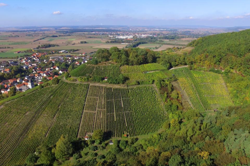 Der Zeller Schlossberg von oben