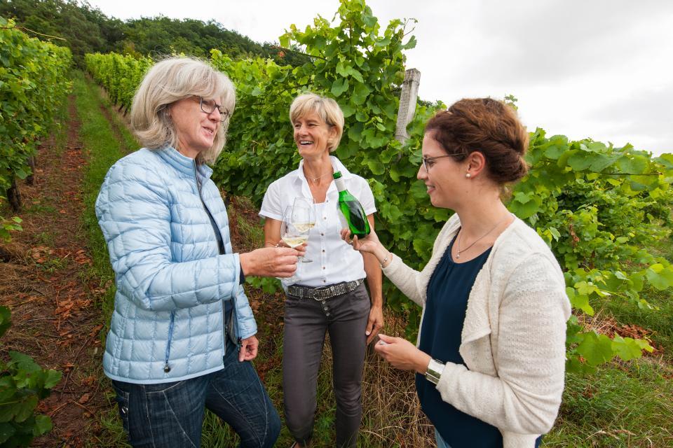Gönn dir! - Wochen: Weinverkostung mit Führung durch die Ziegelangerer Weinberge