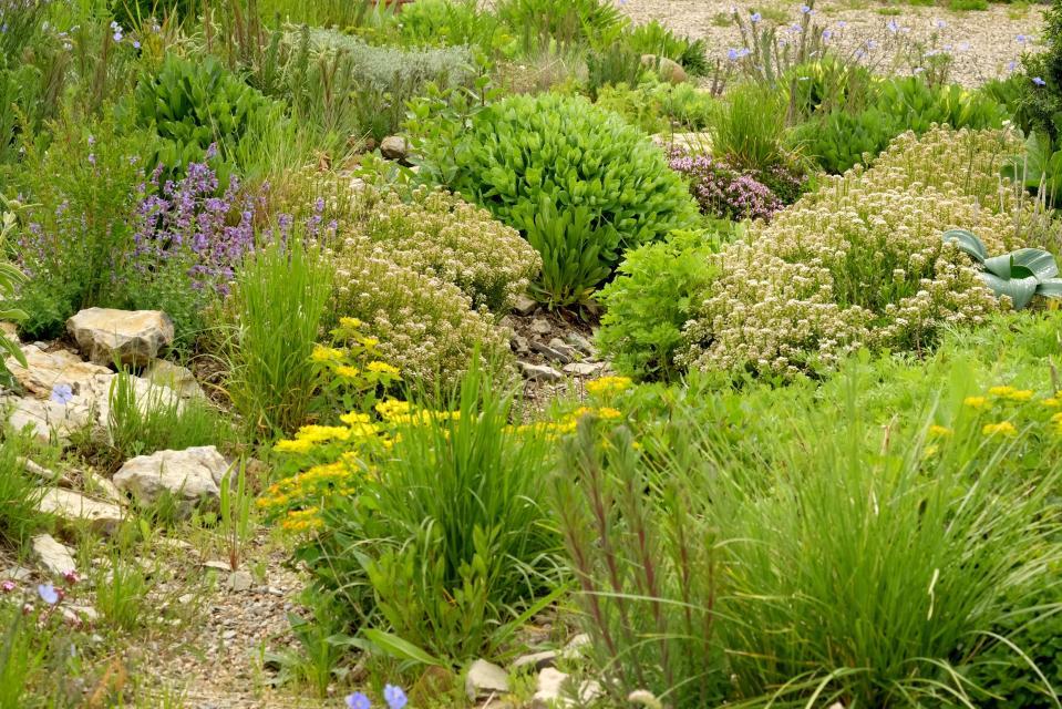 Gartenparadiese: Offener Garten bei Roswitha Amschler