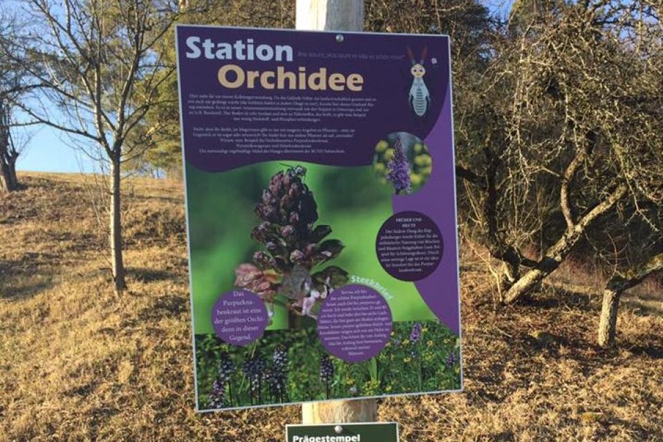 Artenvielfalt auf dem ehemaligen Truppenübungsplatz - Mit dem Gebietsbetreuer unterwegs