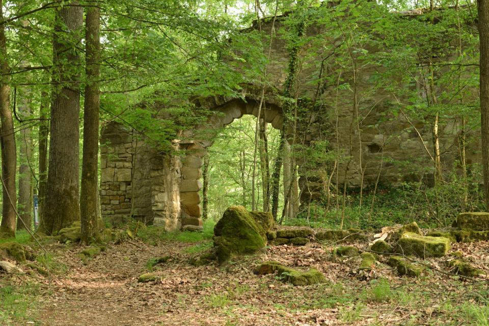 Waldkonzert im Landschaftspark Bettenburg